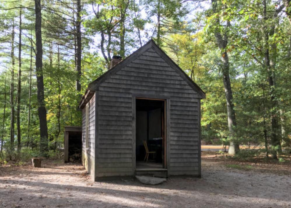 Literary Airbnb Reviews