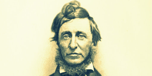 """Who's Laughing Now, Assholes?"" A Letter from Henry David Thoreau to Literature Faculties at Cushy Liberal Arts Schools"