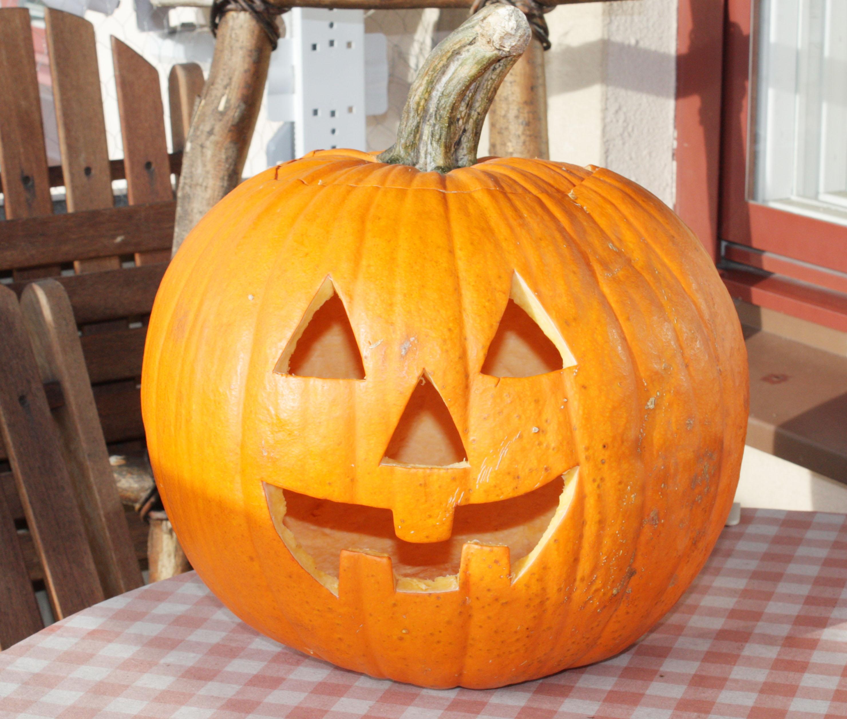 A fun pumpkin carving tutorial! mcsweeneys internet tendency