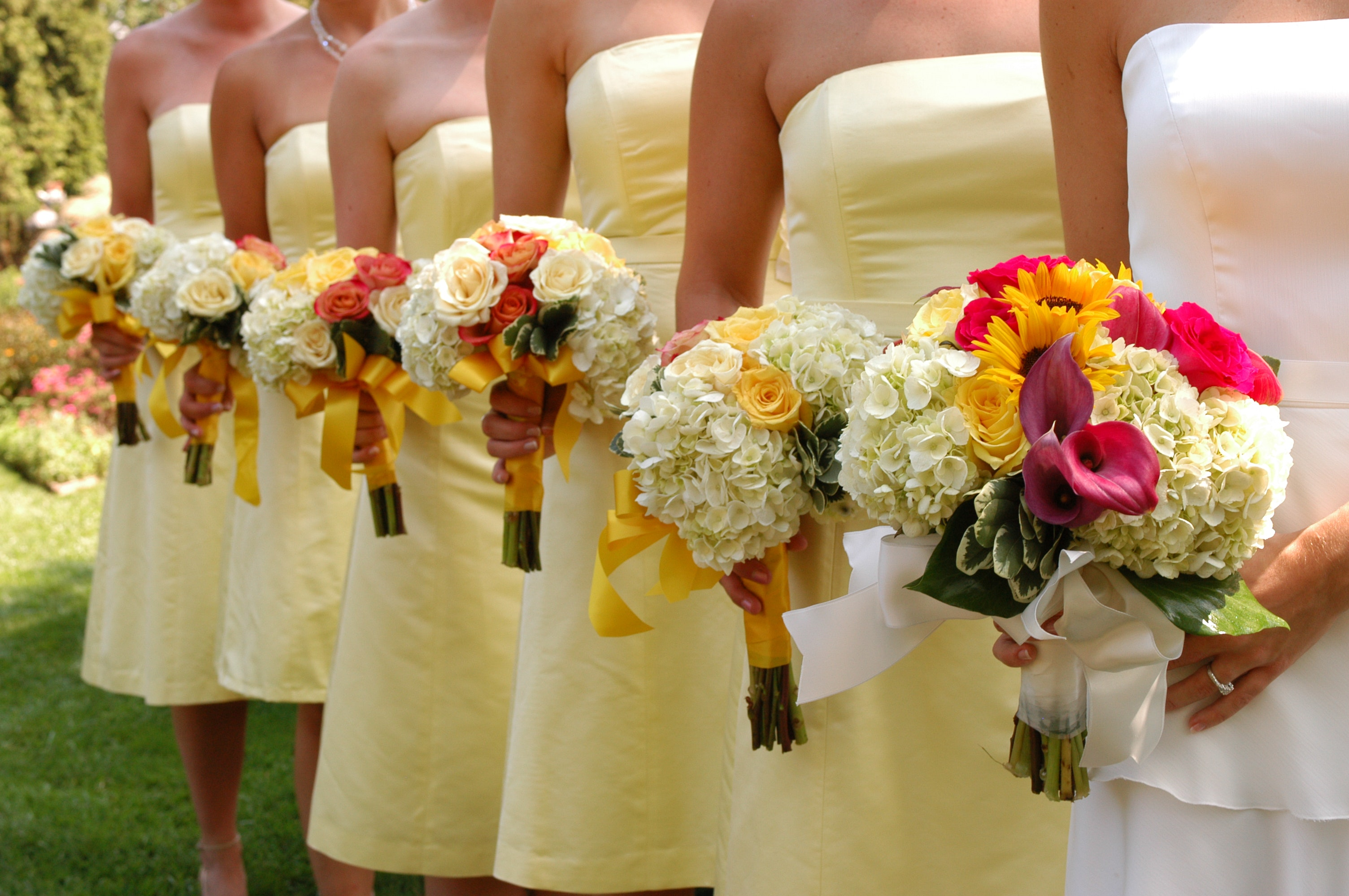 A very chill email to my 47 gorgeous bridesmaids mcsweeneys a very chill email to my 47 gorgeous bridesmaids mcsweeneys internet tendency m4hsunfo