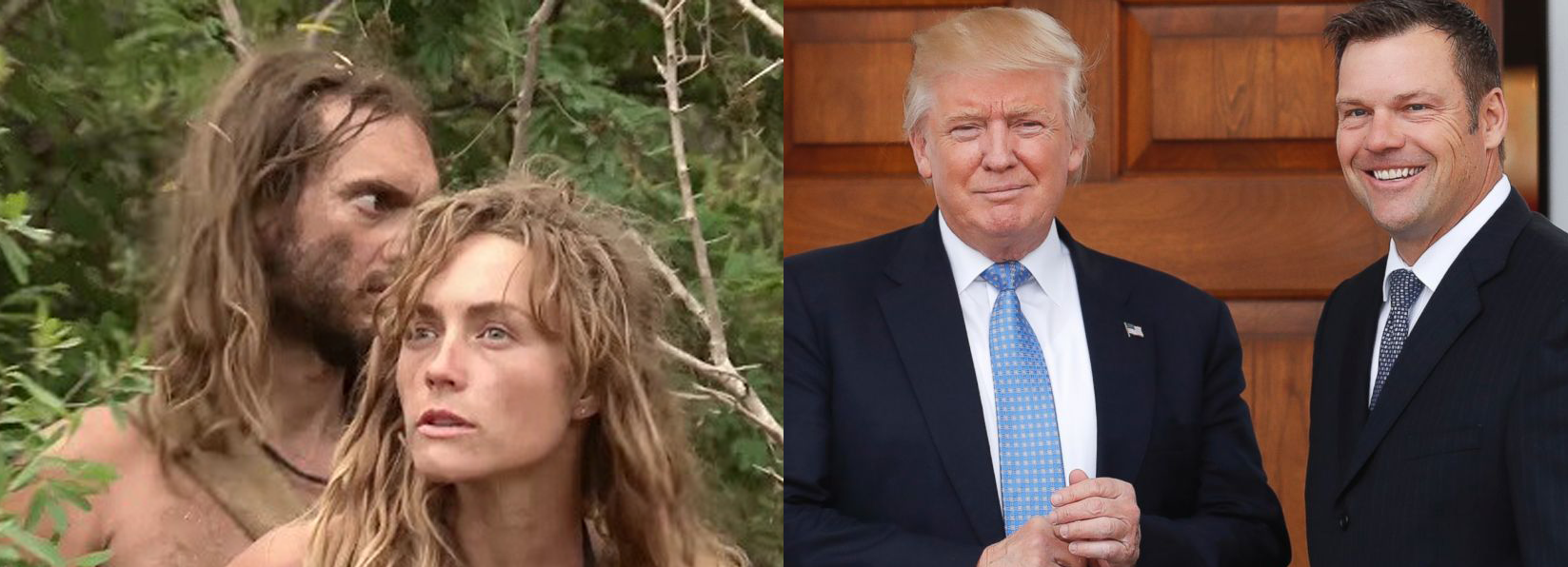 List: Quote from Survival Reality Show Naked and Afraid or Regarding President Trump's Voter Integrity Commission?